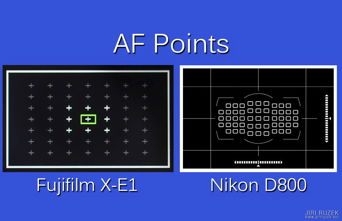Fuji X-E1 vs. Nikon D800 - deployment of the focus points in a viewfinder