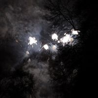 jiri-ruzek-new-year-fireworks-2014-08